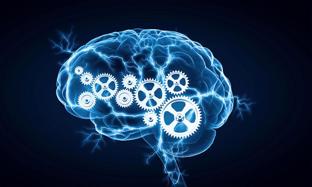 Rodzaje inteligencji