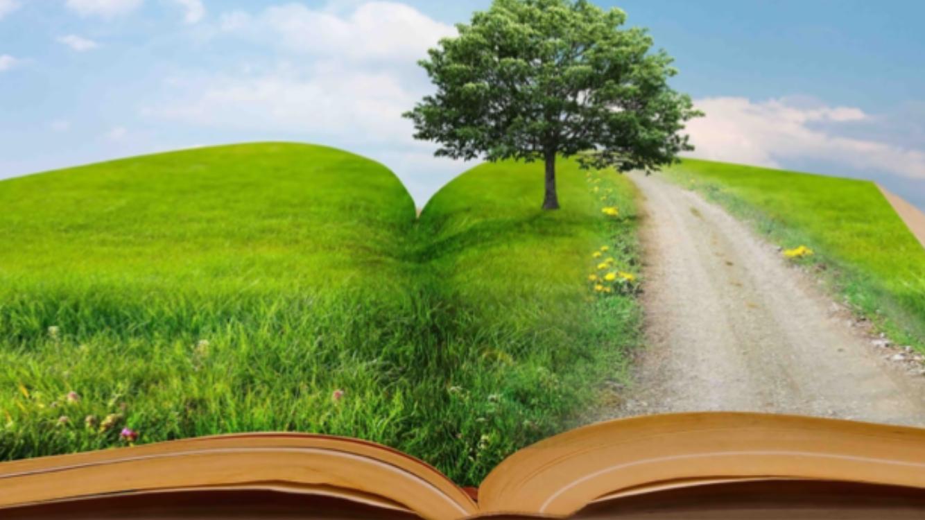 Książkowe inspiracje